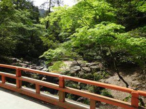 宮島・紅葉谷公園